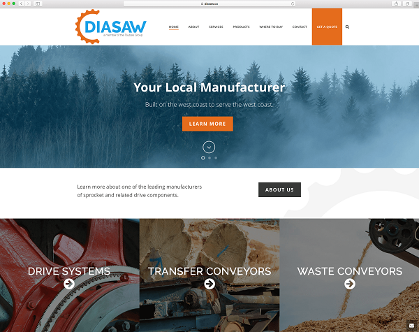 Screenshot of the new Diasaw website homepage