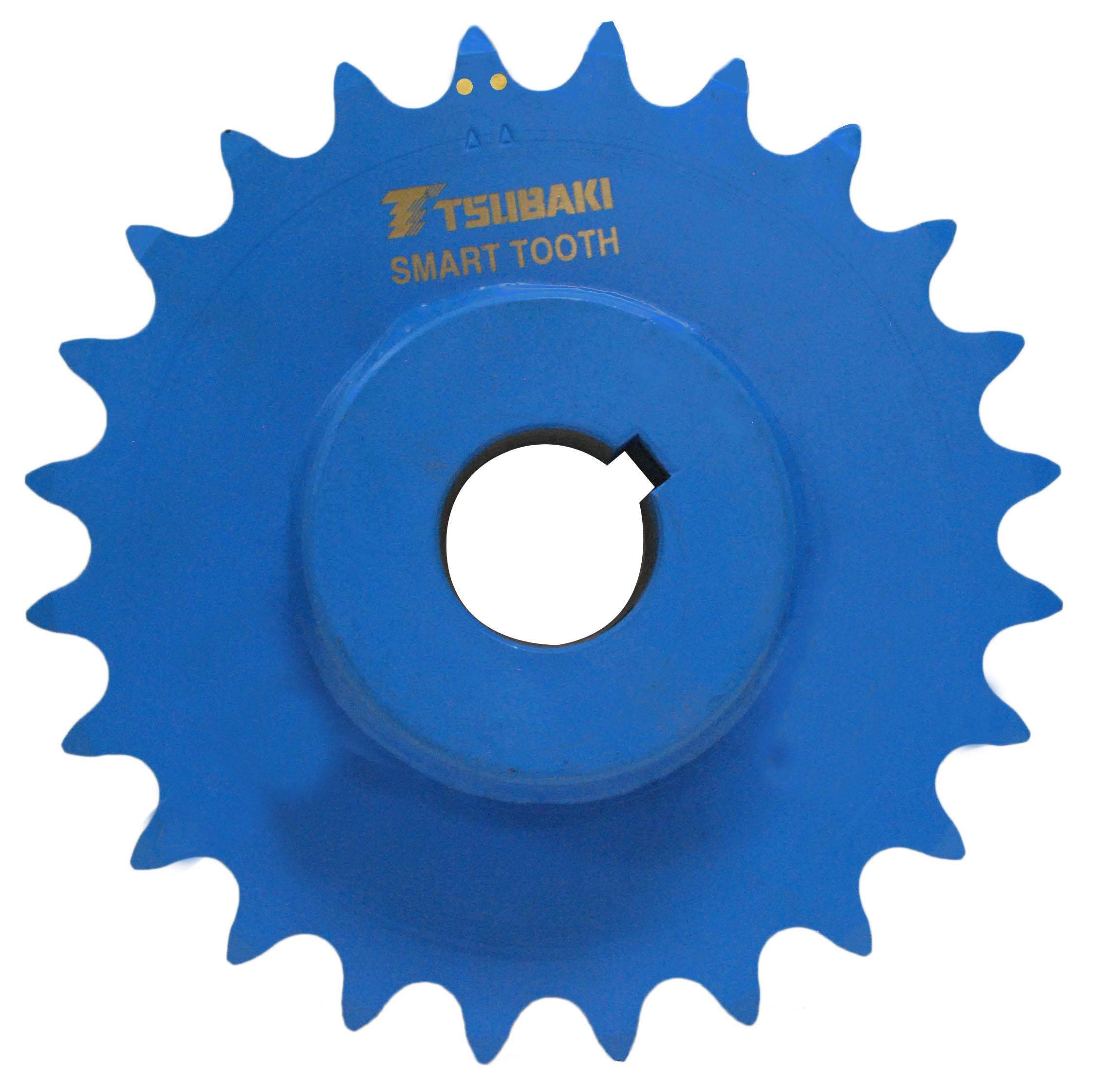 Smart Tooth Sprocket with one set of wear indicator pins